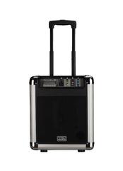 Soundking PA8M Акустическая система c MP3 и микрофоном, портативная, 25Вт
