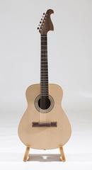 Neva Guitars RHNG6B017 Акустическая гитара