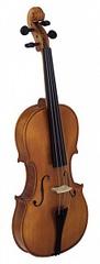 Strunal 920-4/4 Скрипка студенческая