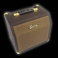 Belcat Acoustic-15C Комбоусилитель для акустической гитары