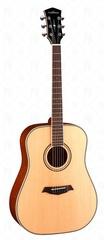 Parkwood P610 Акустическая гитара с футляром