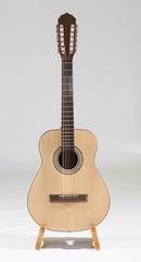 Neva Guitars RHNG12B017 Акустическая гитара, 12-струнная