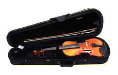 GEWApure EW 4/4 скрипка в наборе