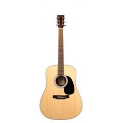 Martin Guitars D1GT Акустическая гитара