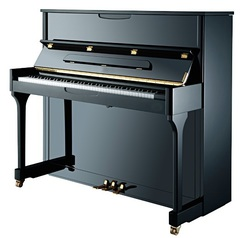 Н.Рубинштейн НР 118 Акустическое пианино