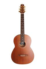 NewTone N17GASDB №17 Акустическая гитара