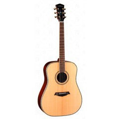 Parkwood P810 Акустическая гитара, дредноут, с футляром