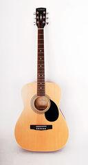 Parkwood PF51-OP Акустическая гитара с чехлом