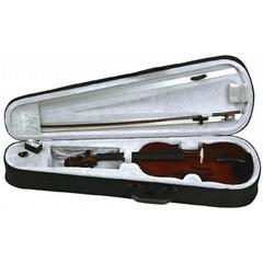 GEWApure HW 4/4 скрипка в наборе