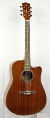 TGX TW-4110C Акустическая гитара